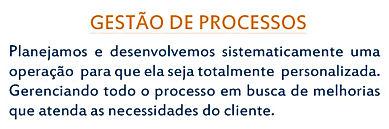 Gestão de Processos: Planejamos e desenvolvemos sistematicament uma operação.