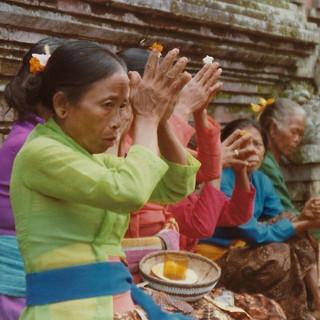 Marigold Collective - Bali