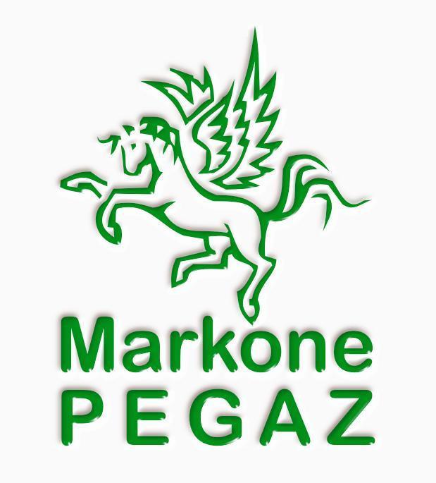 Update Azuriranje Garmin Karte I Mape Markone Pegaz Novi Sad Srbija