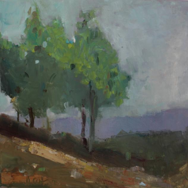 Bäume,_30_x_30,_Öl_auf_Leinwand,_2020.
