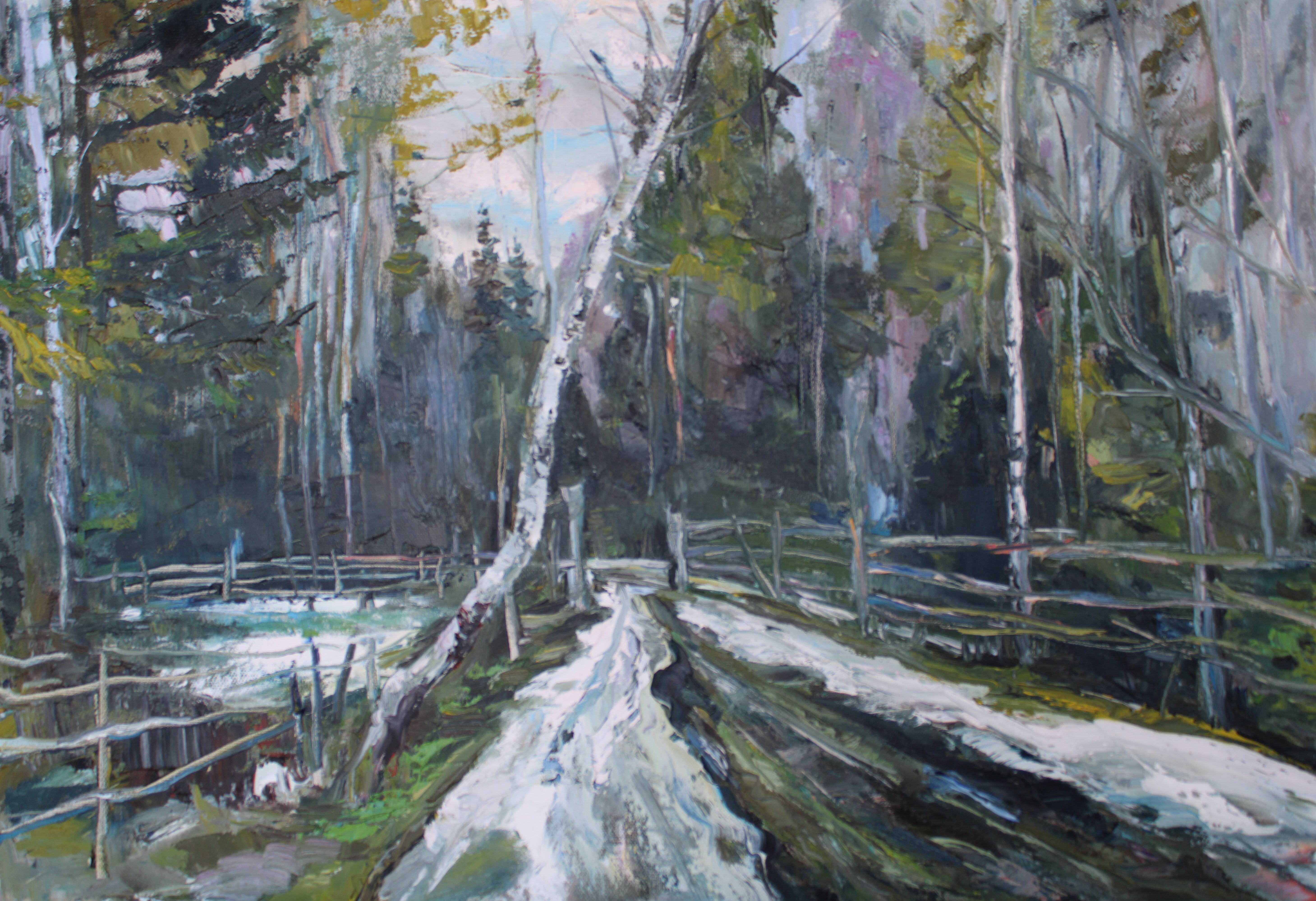 Wald in Russland