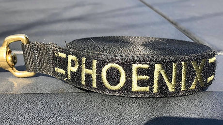 Phoenix%20Leash_edited.jpg