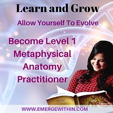 Become Level 1 Metaphysical Anatomy Prac