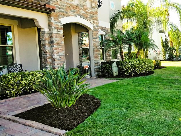 Lawn Care Services in Orlando