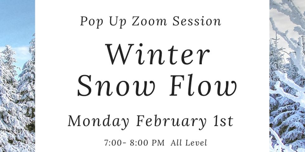 Zoom Winter Snow Flow