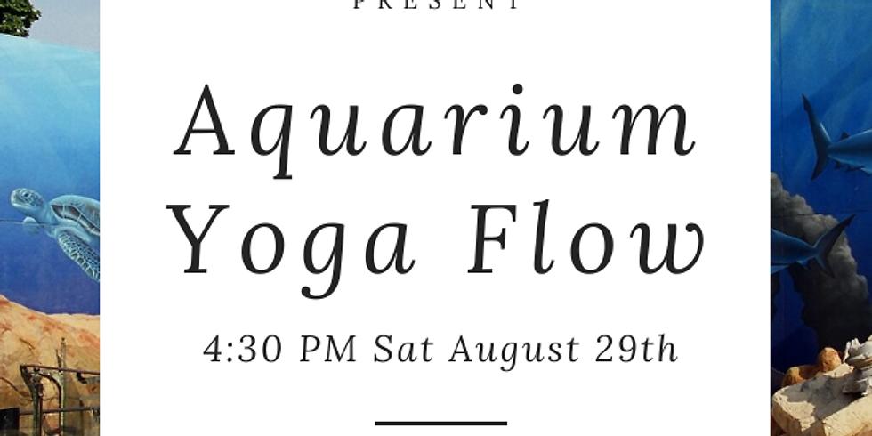Aquarium Yoga Flow