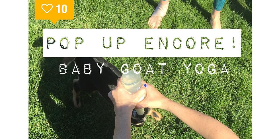 Goat Yoga, a Pop Up Encore!