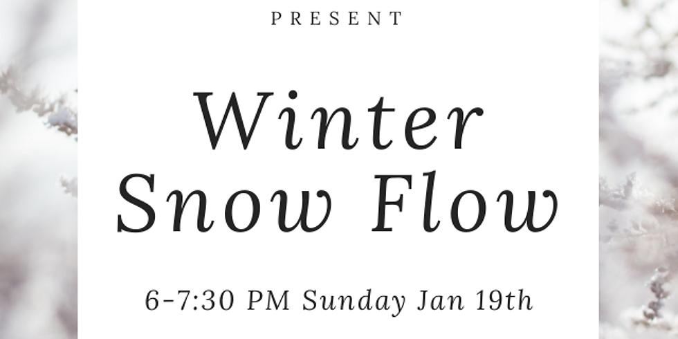 Winter Snow Flow