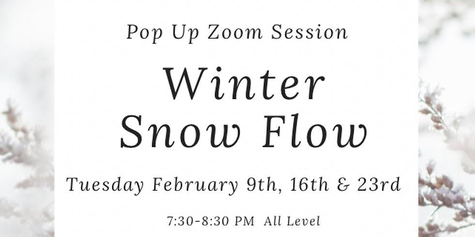 Weekly Zoom Winter Snow Flow