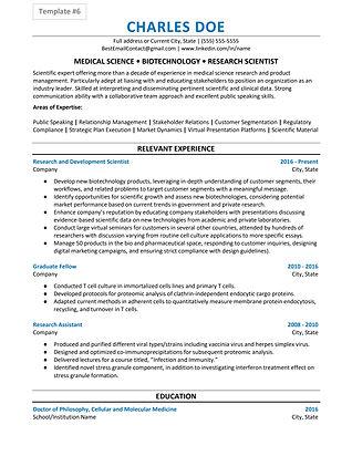 Resume Template 6.jpg