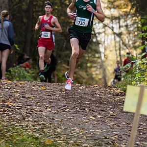Cross Country COUGUARS 2017 ACTION