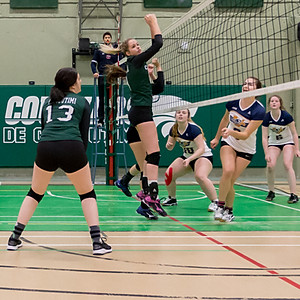 Volleyball ACTION COUGUARS 2017-2018