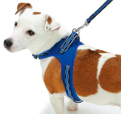 Шлейка-жилетка с Балансером и функцией вентиляции для активных собак