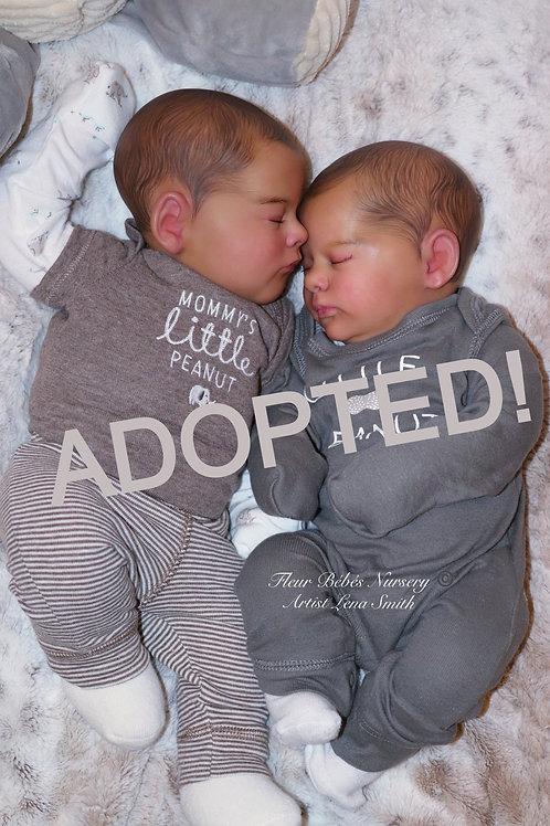 Cuddle Baby Twins Evan & Eli