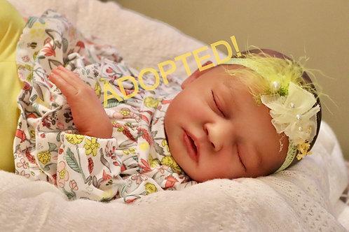 "Skya Asleep ""Hybrid"" by Bountiful Baby & Natalie Scholl"