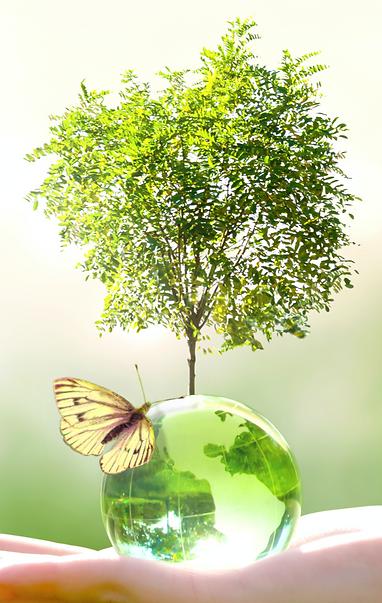 Nachhaltigkeit Kopie.png