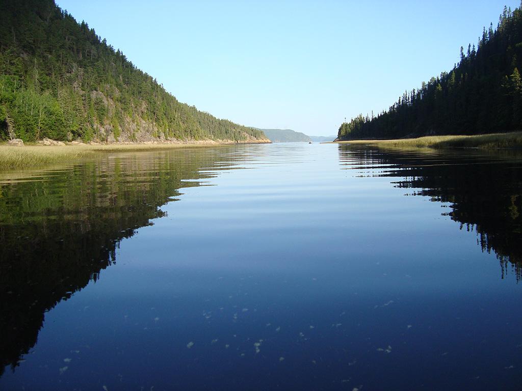 Yoga du Fjord