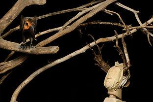 Edward Grue 2 - credit Jason Stang Photo