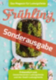 LU_Magazin_Sonderheft_20200414.jpg