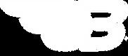 bussard-logo-B_weiß.png