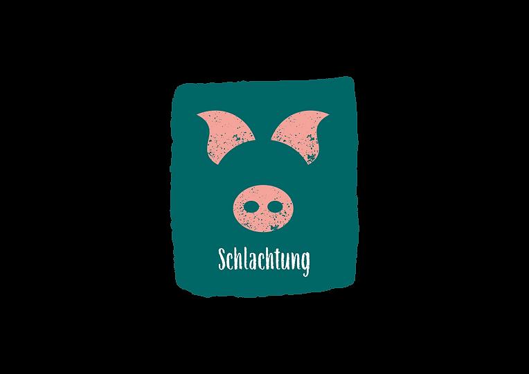Schwein_zur_Wurst_3.png
