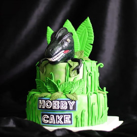 Dinosaur on the cake!! . 🎉 For more inf