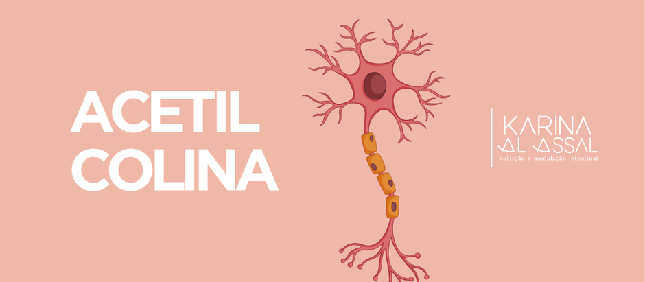 Neurotransmissor Acetilcolina