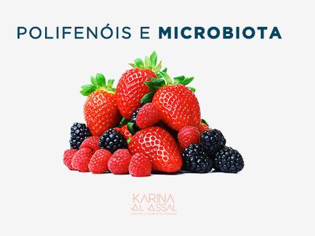 Qual é a relação entre polifenóis e microbiota?