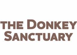 donkey-sanctuary_edited_edited_edited
