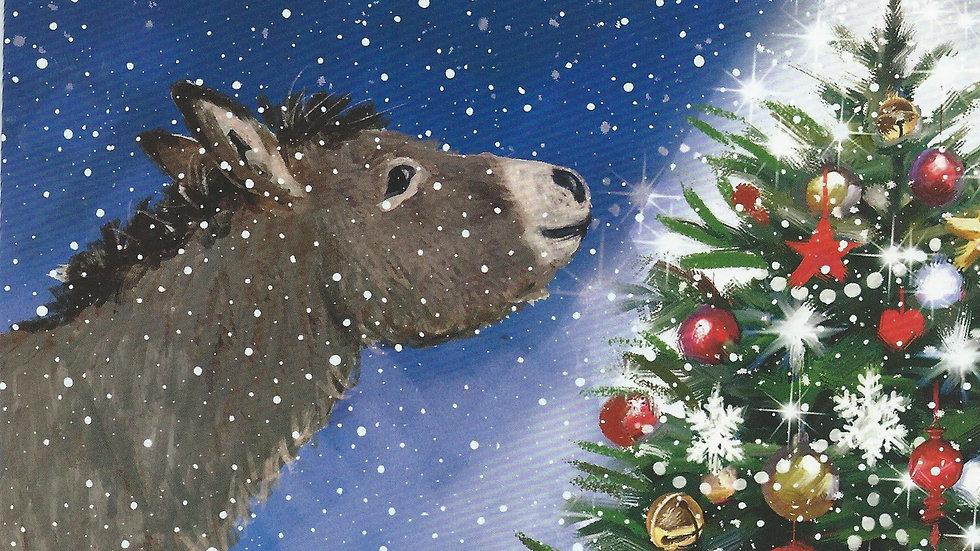 Cartes de Noël -Christmas Star