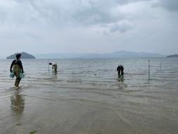大村湾水質改善テスト開始