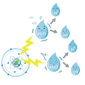 テラ・プロテクト, CAC-717, 除菌, 殺菌, 消毒
