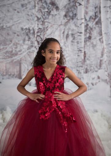 Sullivan Winter Wonderland Model Search