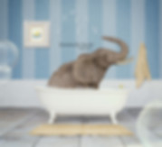 Elephant in the tub Stand Out final.jpg
