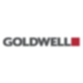 Facebook Goldwell Logo white.png