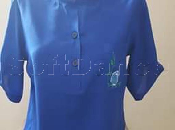 11 Bluse.jpg