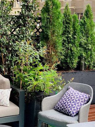 terrasse-amenagee-paysagiste-paris.jpg