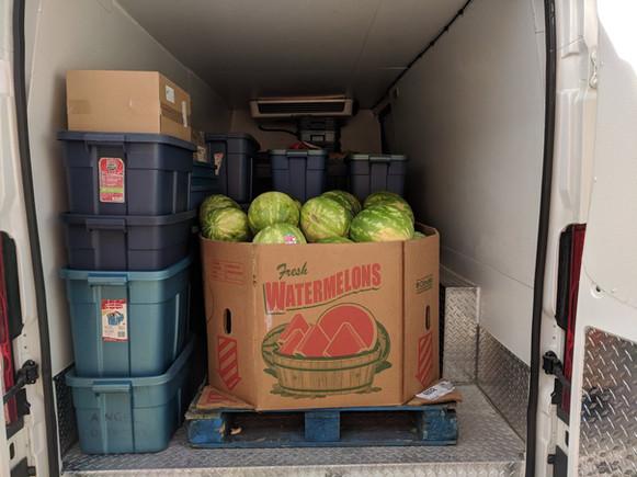 Watermelons Anyone?