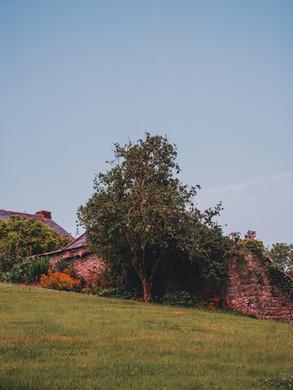 Upton Castle 7