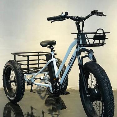 Tricycle electrique
