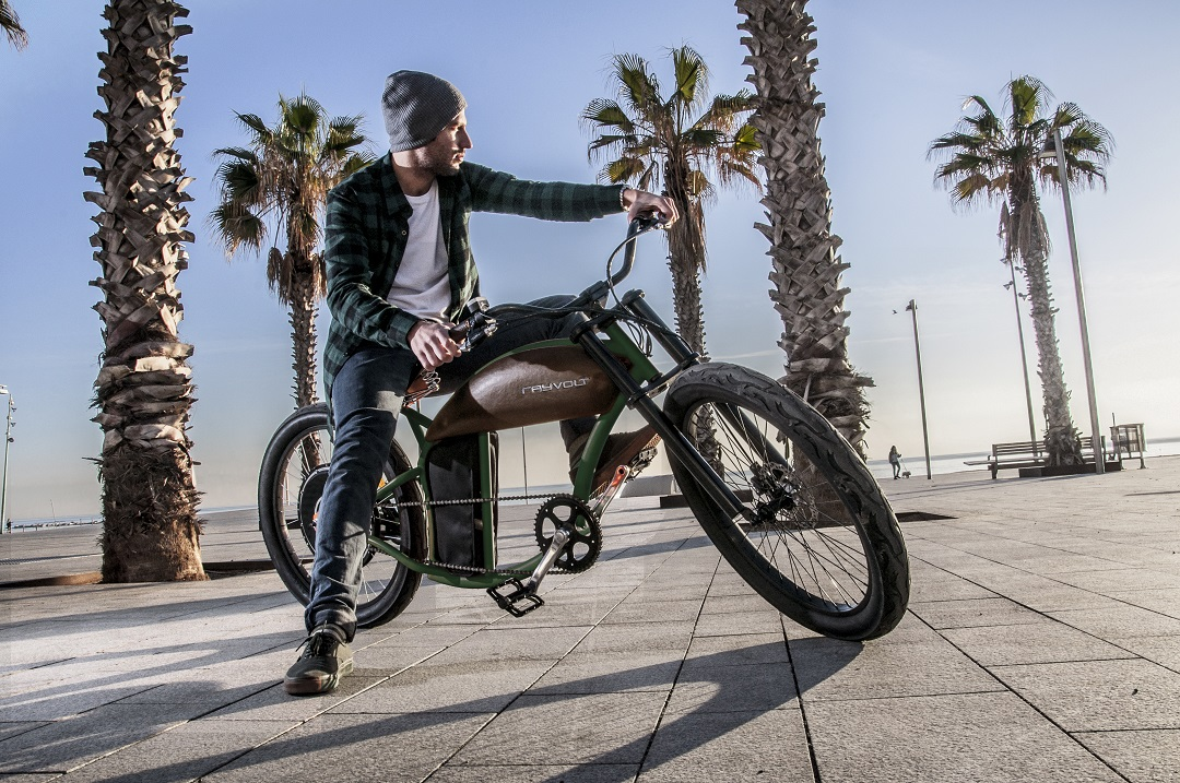Vélo électrique 1000 W