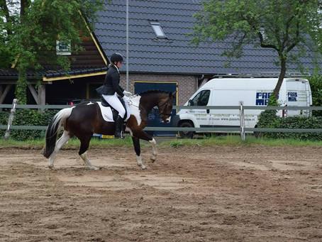 Paardenbakzand van Olivijn: de juiste gradatie