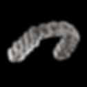 Aligner_on_Gray_background_9_27_2018_10_