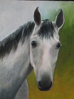 Painting - Dapple Gray.jpg