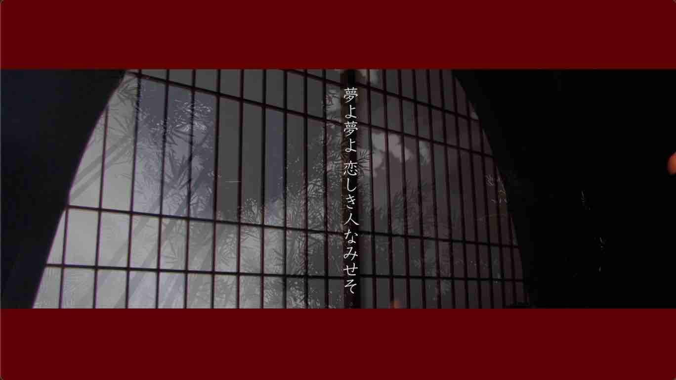 鶴田キャプチャ5.jpg