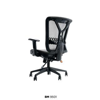 BM-9501