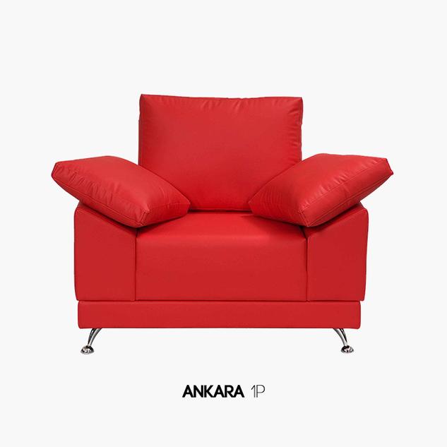 ANKARA-1P
