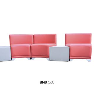 BMS-560