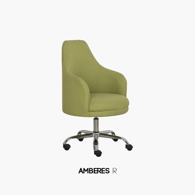 AMBERES-R