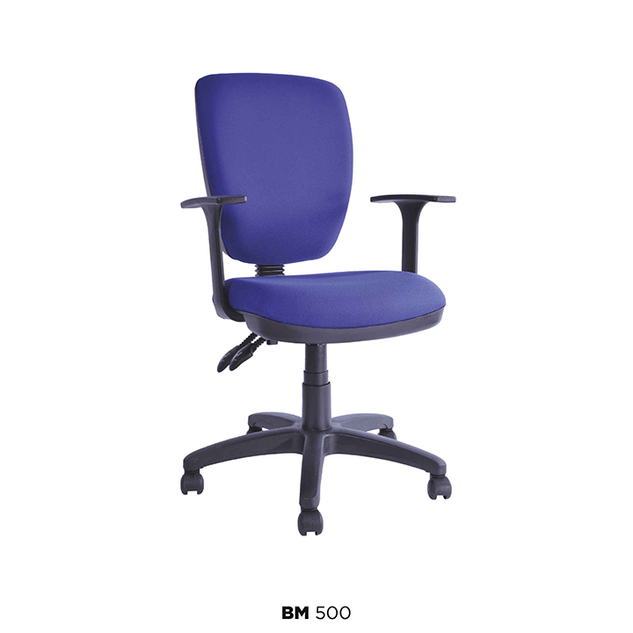 BM-500